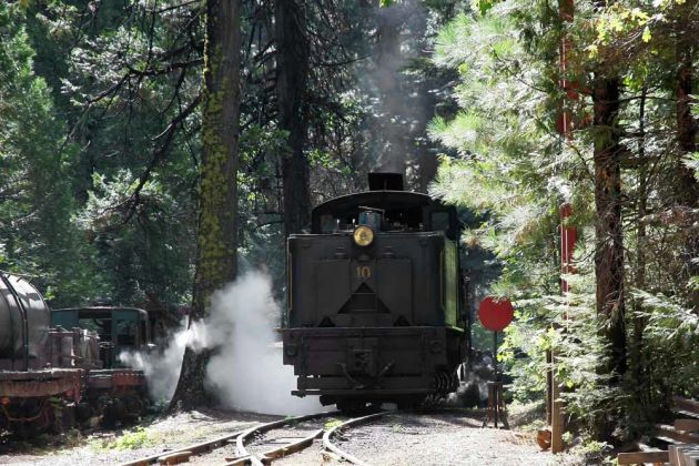 Shay Schmalspur-Dampflok No. 10 - Yosemite Mountain Sugar Pine Railroad